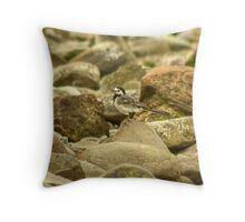 Pied Wagtail On The Solway Throw Pillow