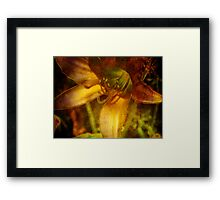 Digital Abstract Lily Framed Print