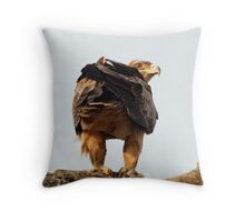 Tawny Eagle - Kruger National Park Throw Pillow