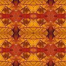 leaf collage version d by H J Field