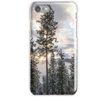 Early Winter Morning From the Deck iPhone Case/Skin