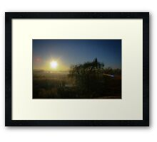 Reeds And Trees  Framed Print