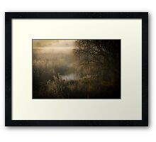 Bush and Reeds  Framed Print