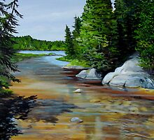North East end of Hattie Cove- Pukaskwa National Park - Heron Bay Ontario Canada by loralea