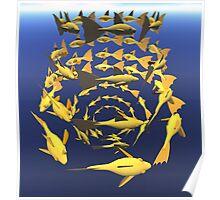 Fish Spiral Poster