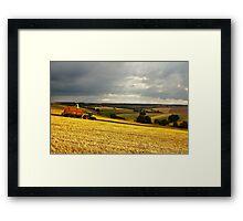 Summer harvist Framed Print