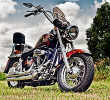1987 Custom Harley Softail by Gary Paakkonen