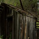Old out building on farm by Valerie Henry