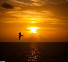 Sunset on Sunset Beach, Florida by LauraBroussard