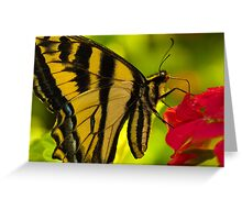 A Butterfly World Greeting Card