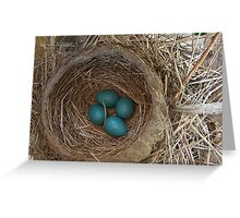 Robin's Nest - Sign of Spring Greeting Card