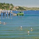 The green boat at Connells Bay by Freda Surgenor