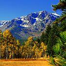 """""""Mount Tallac Meadow"""" by Lynn Bawden"""