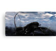Native Goliath Cockroach Canvas Print