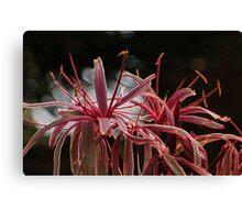 Flower Limbs Canvas Print