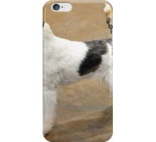 Cute Fox Terrier Wire Coat iPhone Case/Skin