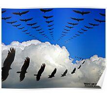 Texas Air Patrol, buzzard division Poster