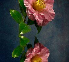Camilla Refection by BoB Davis