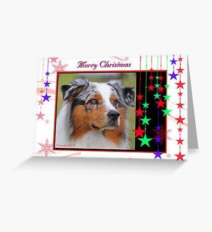 CC1 - Australian Shepherd Dog Greeting Card