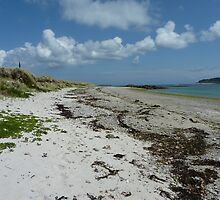 Tide Line ~ Tresco, The Isles of Scilly by Sarah Thomas