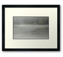 Birds over still water Framed Print