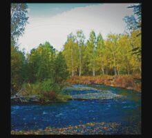 Autumn Stream Alaska  Kids Tee