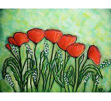 Poppies.. Photographic Print