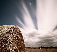 Summer  by Jan  Postel