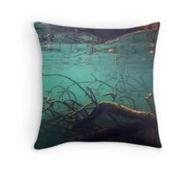 Archers in the Shadows Throw Pillow