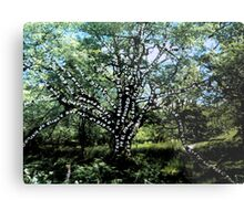 Power, connection and growth Metal Print