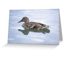 Quackers!  Greeting Card