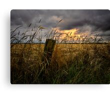 Willamette Valley Harvest Time Canvas Print