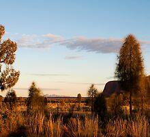 Desert Awe by Cathy  Walker