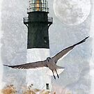 Tybee Lighthouse by Regenia Brabham