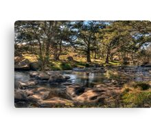 A River Runs Through It #2 - The Fly , Near Oberon, NSW Australia - The HDR Experience Canvas Print
