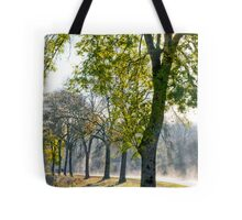 Misty Towpath Tote Bag