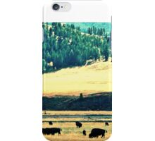 Yellowstone Buffalo iPhone Case/Skin