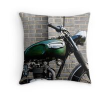 Subdued Triumph Throw Pillow