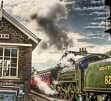The 9.17 At Levisham Crossing by patrixpix