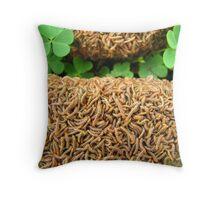 Field of Clover Throw Pillow