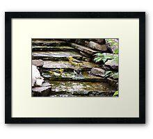 Hot Day Bird Bathing Framed Print