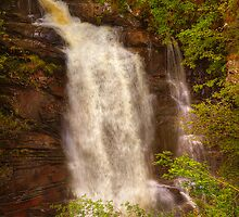 Birks of Aberfeldy (2) by Karl Williams