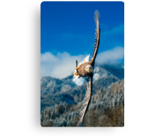 Crosswind Canvas Print