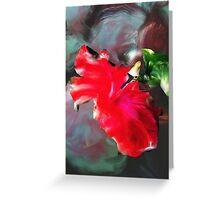 flower graden Greeting Card