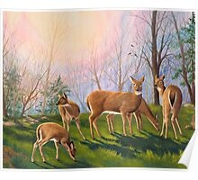 """""""Deer at Dawn"""" - Early morning in the mountains Poster"""