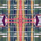 wire matrix collage II by H J Field