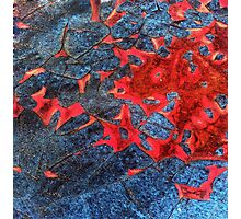 Chipped Paint & Rust - Grunge Photographic Print
