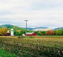 New York Farm in Late Autumn by Rodney Williams