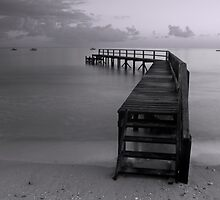 Shelly Beach Pier by Matt Bishop