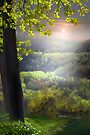 Sunset In The Hills by Igor Zenin